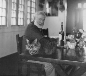 hemingway and his cat