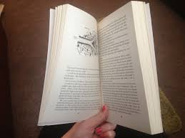Image of book 1