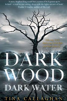 Dark Wood Dark Water