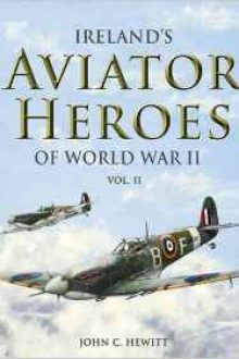 Irelands Aviator Heroes