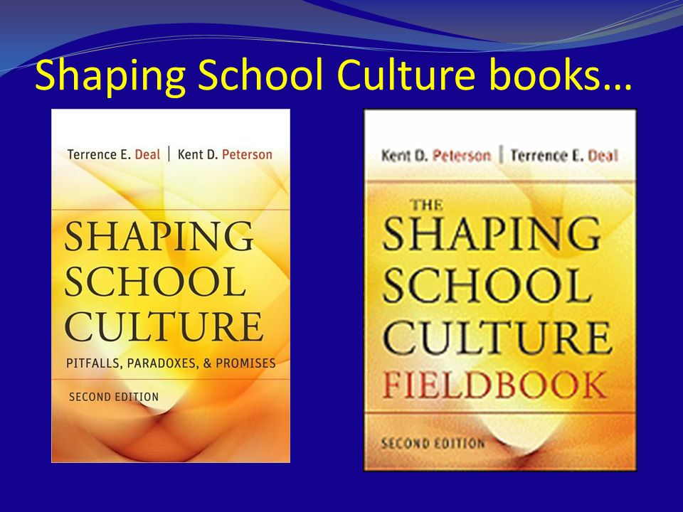 reshaping cultures